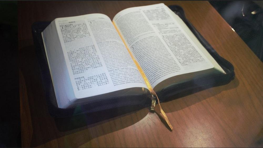 Hai mai notato contraddizioni Bibbia?