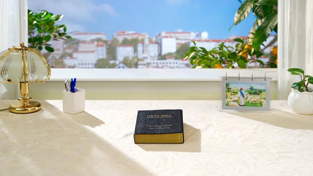 La Bibbia è solo una testimonianza delle due fasi dell'opera di Dio nell'Età della Legge e nell'Età della Grazia; ma non della Sua opera intera.