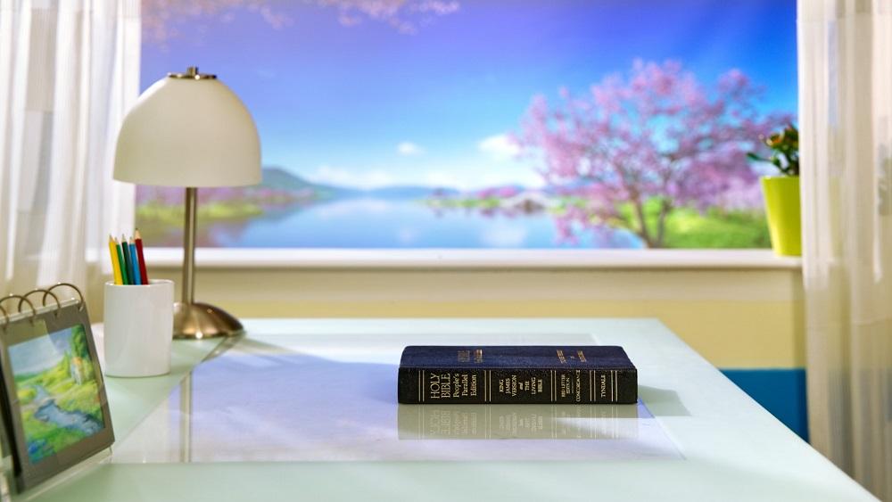 Come ci si dovrebbe trattare la Bibbia e usarla, in modo da essere conformi alla volontà di Dio? Qual è il valore originale della Bibbia?