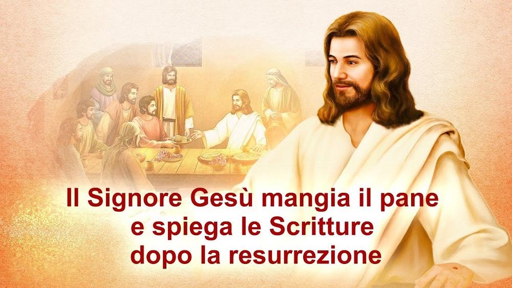 """Il Vangelo del giorno """"L'opera di Dio, l'indole di Dio, e Dio Stesso III"""" Parte 8"""