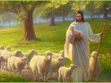 Signore Gesù è il nostro buon Pastore